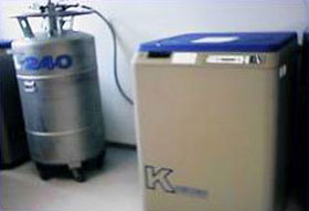 Cryopreservation storage tank